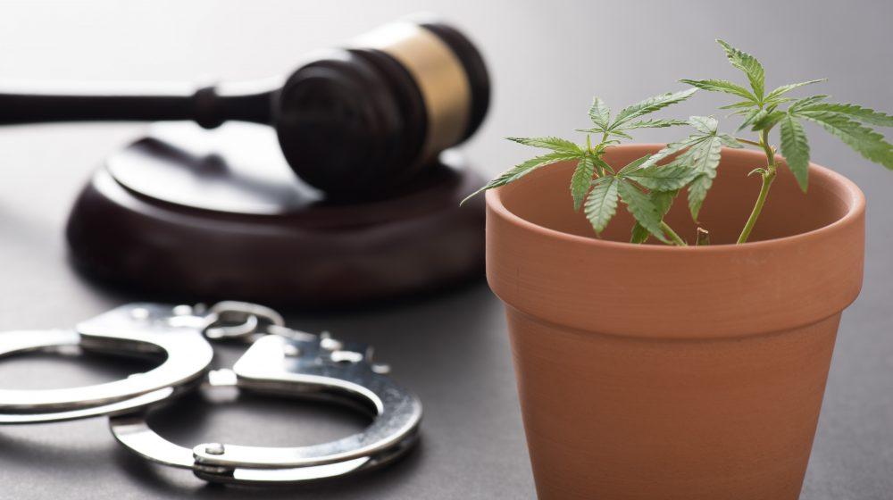 タイの麻薬事件数は約1年間で35万件以上