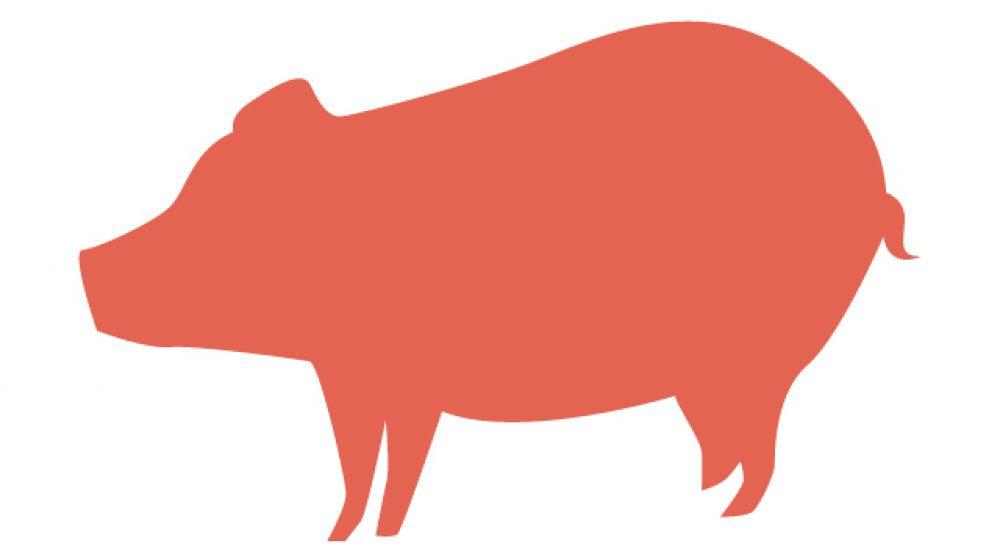 香港がタイ産豚の1頭輸入を増やす方針