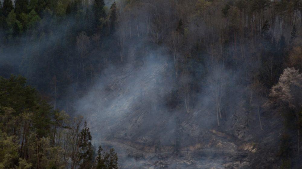 大火事のプー・クラドゥン国立公園、6カ月間閉園