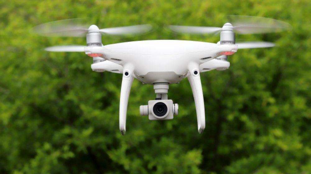 ドローンや人工衛星を活用森林の管理で、情報共有も