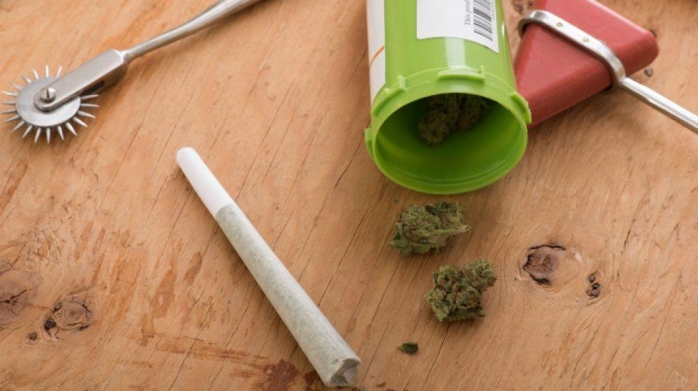 大麻イベント11月開催へ タイ初、医療用で解禁