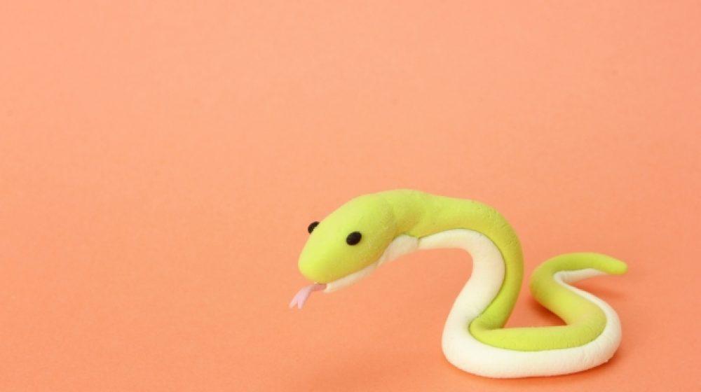 プラーラーの容器内にヘビ 購入男性がSNSで注意喚起