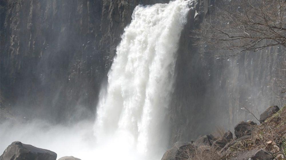 カオヤイ国立公園の滝で野生の象6頭が転落死